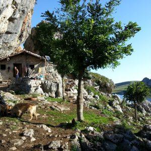 cabaña en los Lagos de Covadonga