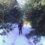 Ruta de Camarmeña a la majada de Ondón