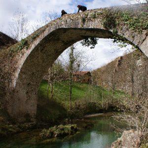 puente del dobra